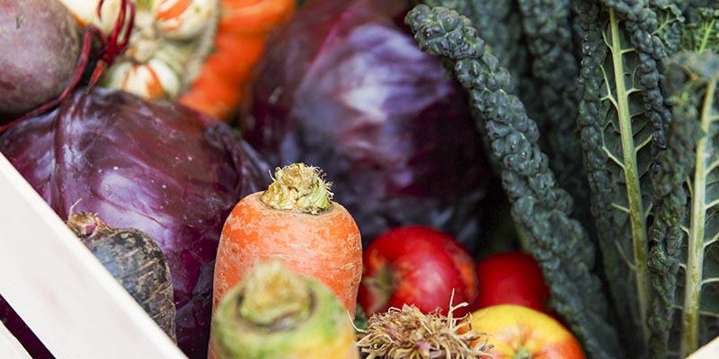 Ät rätt – för hälsan och miljön!